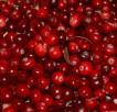 cranberries-957583_960_720