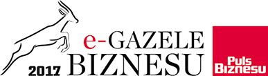 e-gazela businessu 2017